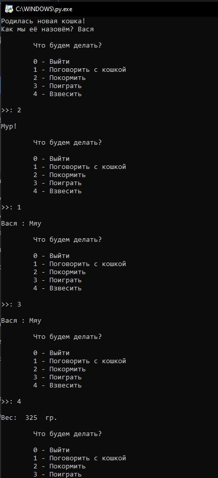 Объектно-ориентированное программирование в Python