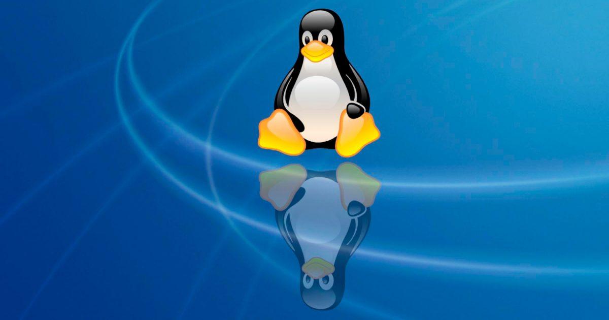 Команды в терминале Linux для работы с файлами и директориями - 2 часть