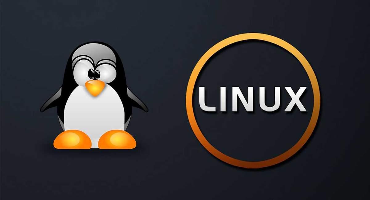 Команды в терминале Linux для управления процессами